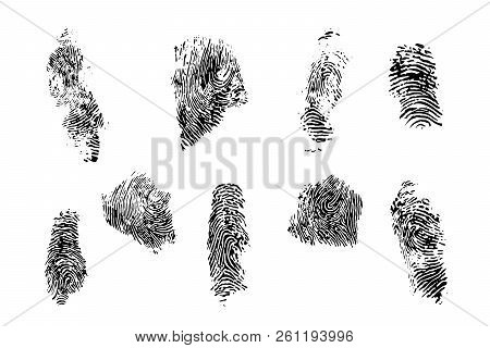 Finger Prints Vector Set. Different Forms Of Prints And Different Fingers Of A Human Hand.