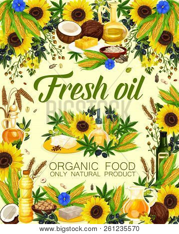 Natural Oil Of Sunflower Seeds, Olive And Corn, Peanuts And Linseed, Wheat And Hemp. Oils For Cosmet