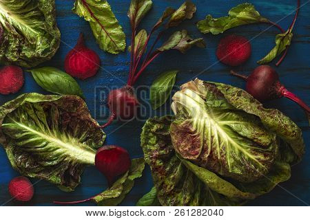 Pile Of Homegrown Organic Young Beets With Green Leaves And Lettuce Chicory With Water Drops On Dark