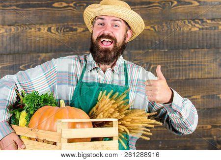 Farmer Hipster Straw Hat Deliver Fresh Vegetables. Man Cheerful Bearded Farmer Wear Apron Presenting