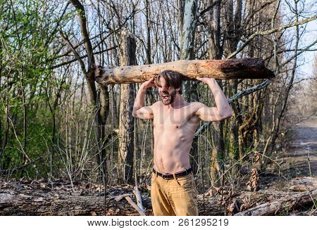 Man brutal strong attractive guy collecting wood in forest. Masculine leisure. Man beaded brutal sexy lumberjack carry big heavy log. Lumberjack or woodman sexy naked muscular torso gathering wood poster
