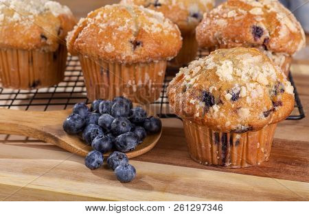 Blueberry Muffin And Spoonful Of Berries On A Wooden Spoon With Muffins On Cooling Rack In Backgroun