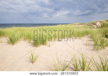 Bright Lit Sand Dunes And Green Grass Against Dark And Moody Sky And Ocean Near Greenwich Interpreti