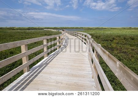 Boardwalk At Greenwich Marsh In Prince Edward Island Canada