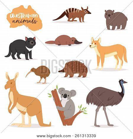 Australian Animals Vector Animalistic Character In Wildlife Australia Kangaroo Koala And Platypus Il