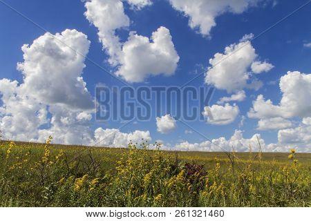 Cumulus Clouds, Blue Sky, Goldenrod And Autumn Vegetation, Tallgrass Prairie National Preserve, Kans