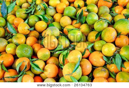 Mandarin Fruits