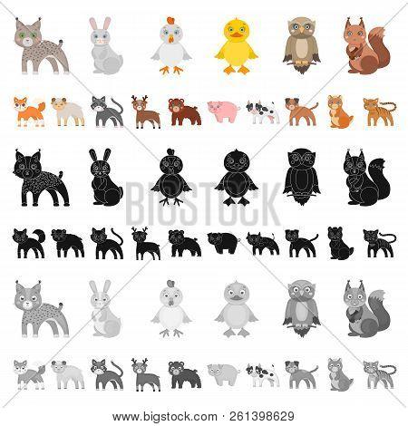 Toy Animals Cartoon Icons In Set Collection For Design. Bird, Predator And Herbivore Vector Symbol S