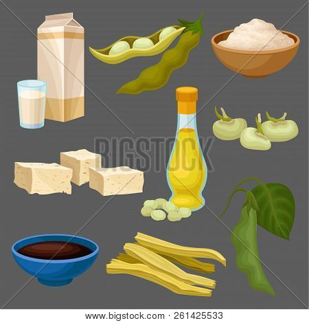 Soya Food Products Set, Milk, Oil, Sauce, Tofu, Bean, Flour, Meat, Healthy Diet, Organic Vegetarian