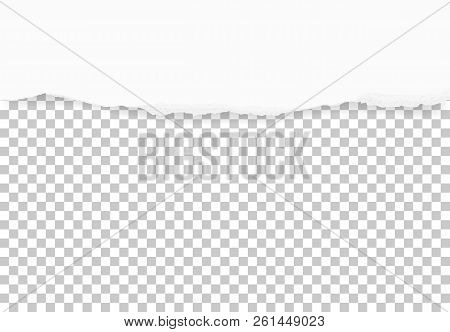 Torn Paper Edges For Background. Ripped Paper Texture On Transparent Background. Vector Illustration