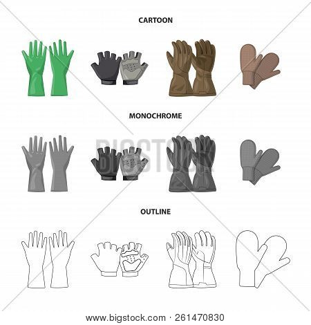 Vector Illustration Of Glove And Winter Sign. Set Of Glove And Equipment Stock Vector Illustration.