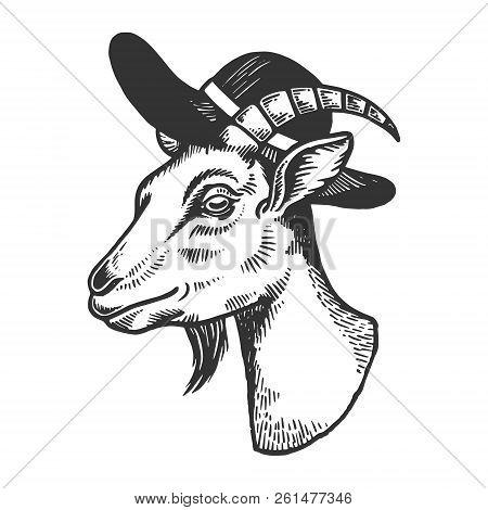 Goat Inbroad Brim Hat Engraving Vector Illustration. Scratch Board Style Imitation. Black And White