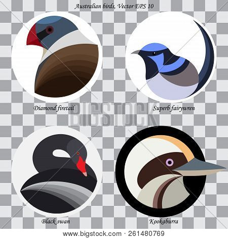 Set Of Colored Abstract Australian Birds For Logo, On White And Black Circles, Isolated