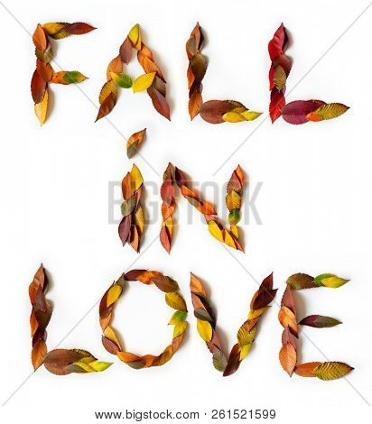 FALL IN LOVE makes of colorful autumn leaves. Positive affirmation mades of fall foliage. Autumnal design. Words of mades from multi-colored leaves