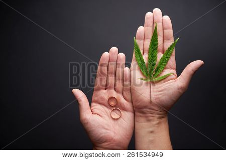 Marijuana, Drugs Or Family Concept Of Choice