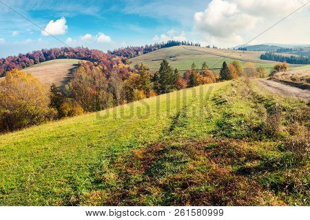 Lovely Autumn Landscape In Mountains. Forest With Red Foliage On The Hill In The Distance. Wonderful