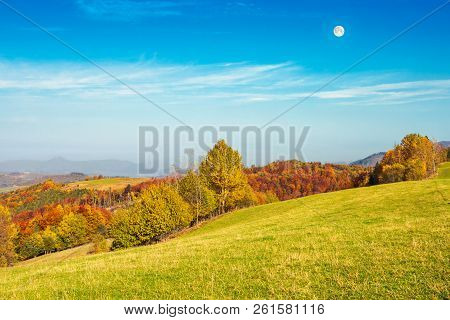 Autumn Landscape With Grassy Meadow And Row Of Trees In Autumn Foliage. Mountain Ridge In The Distan