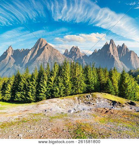Composite Image Of High Tatra Mountains. Spruce Forest In Front And Gorgeous Blue Sky Above. Beautif