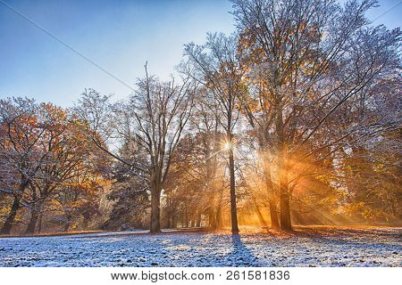 Colorful autumn forest covered with first snow powder. Beautiful rural scenery.