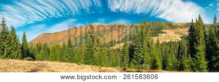 Panorama Of A Mountain Ridge Under The Gorgeous Sky With Clouds. Spruce Forest On The Nearest Hill.