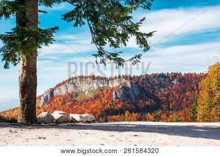 Parking Lot In Romania Mountains. Beautiful View Of Cliff Above The Forest In Fall Color In The Dist