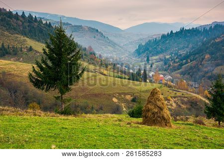 Beautiful Rural Area Of Carpathian Mountains. Haystack And Spruce Tree On Edge Of A Hill. Village Do