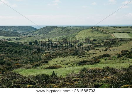 A Beautiful Natural Landscape With Green Trees On A Hilly Terrain Against A Blue Sky On A Sunny Summ