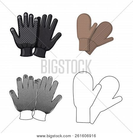 Vector Illustration Of Glove And Winter Symbol. Collection Of Glove And Equipment Stock Symbol For W