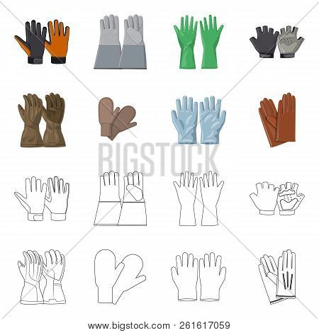 Vector Illustration Of Glove And Winter Symbol. Set Of Glove And Equipment Stock Vector Illustration