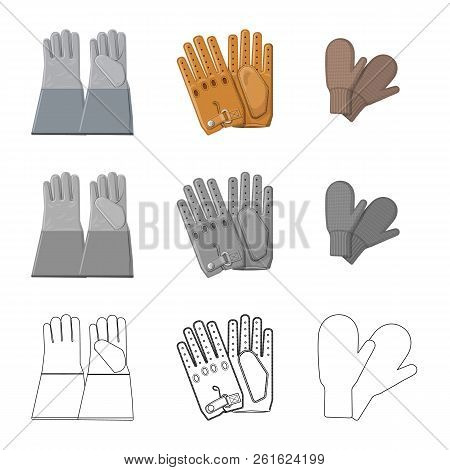 Vector Illustration Of Glove And Winter Icon. Set Of Glove And Equipment Vector Icon For Stock.