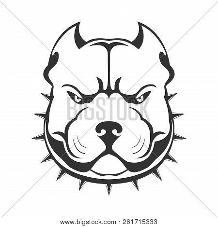 Pit Bull Images Illustrations Vectors Free