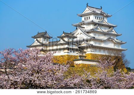 The Himeji castle at full cherry blossom, Unesco world heritage, Japan