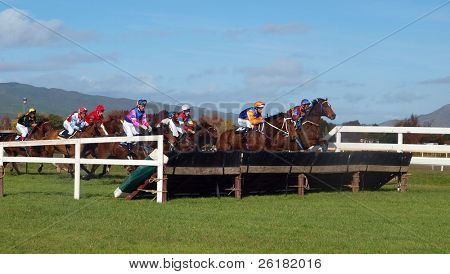 A field of racehorses as they reach a hurdle