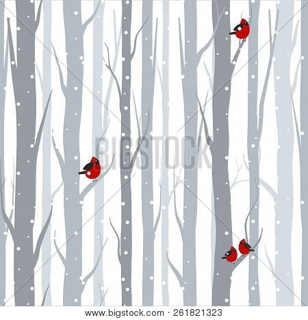 Vector Illustration Of Seamless Pattern With Grey Trees Birches And Red Birds In Winter Time With Sn