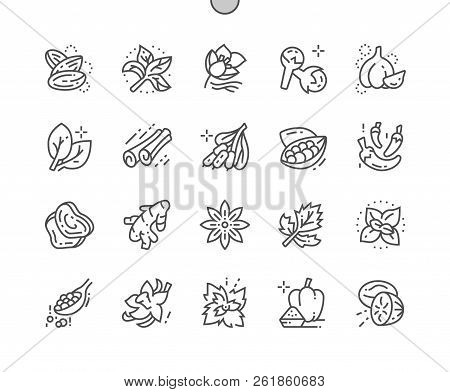 Herbs And Spices Well-crafted Pixel Perfect Vector Thin Line Icons 30 2x Grid For Web Graphics And A