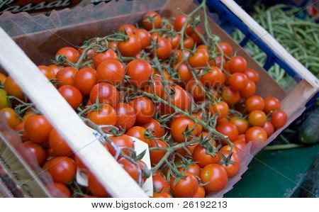 Fresh Italian tomatoes on the vine at market; Cinque Terre, Italy