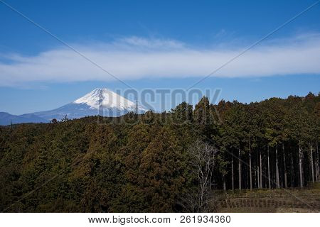Mt.fuji And Forest With Blue Sky At Mishima Skywalk, Japan
