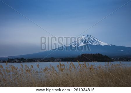 The Mount Fuji At Lake Kawaguchiko, Japan