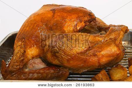 Roast turkey and potatoes still in the roasting tray