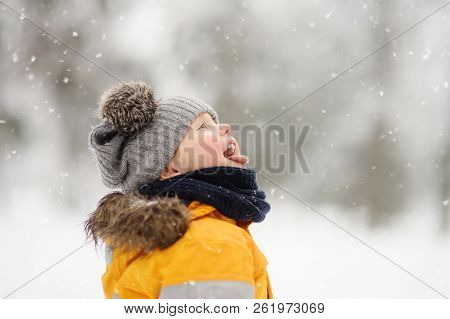 Cute Little Boy Catching Snowflakes With Her Tongue In Beautiful Winter Park. Outdoors Winter Activi