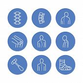 Spine, backbone line icons. Orthopedics clinic, medical rehab, back trauma, broken bone, posture correction scoliosis. Health care hospital circle signs, logo poster