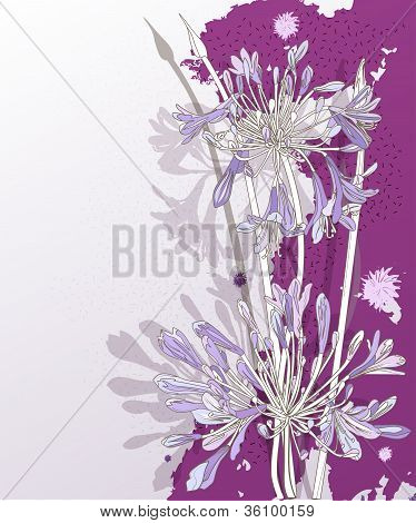 Guel Flowers 3