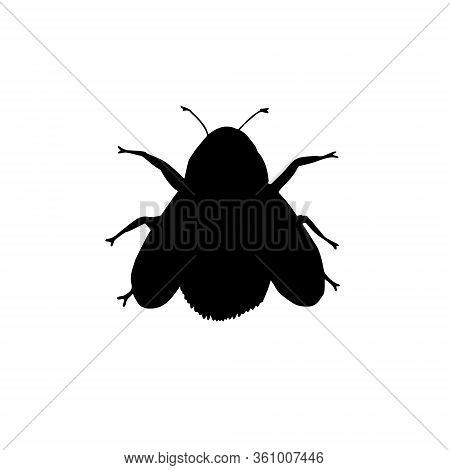 Vector Black Bumblebee Bee Silhouette Isolated On White Background