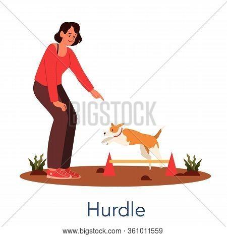Dog Agility Hurdle. Training Exercise For Pet. Man Training His Pet Dog.