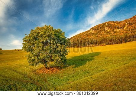 Autumn Rural Landscape With A Tree In A Foreground. National Nature Reserve Sulov Rocks, Slovakia, E
