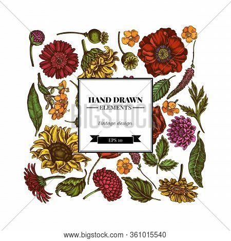 Square Floral Design With Colored Poppy Flower, Gerbera, Sunflower, Milkweed, Dahlia, Veronica Stock