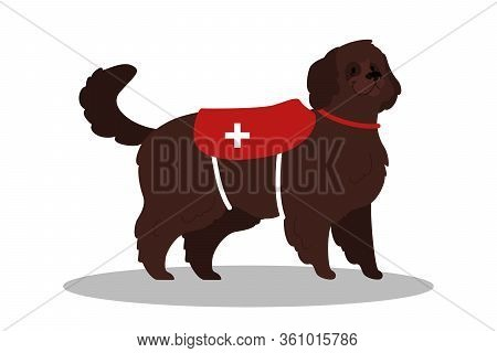 Dogs Rescuer. Cadaver Dog For Finding People. Cute Domestic Pet