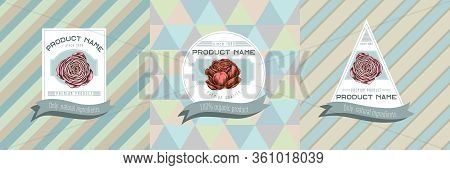 Three Colored Labels With Illustration Of Ranunculus Stock Illustration