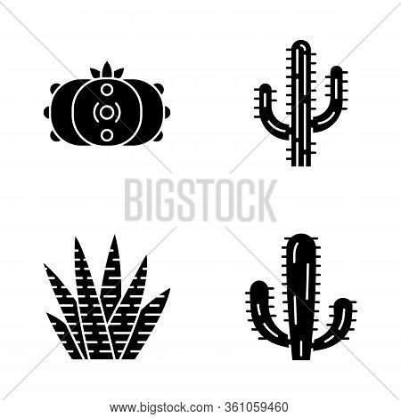 Wild Cactus Glyph Icons Set. Succulents. Cacti Collection. Saguaro, Peyote, Mexican Giant And Zebra