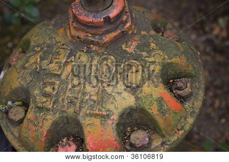 Old Fire Hydrant Cap